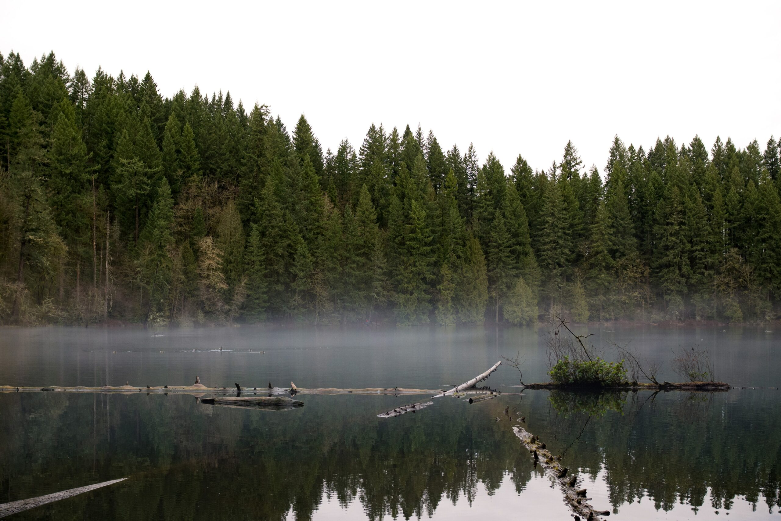 battle ground lake